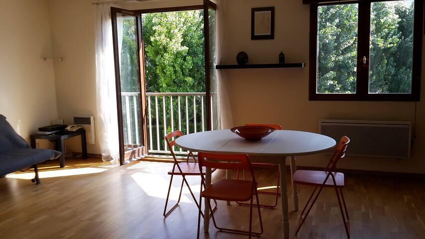Bel appartement lumineux au cœur de Lille + pkg - Lille - Apartemen