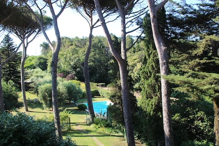 Hills of Lucca – Two-room apartment Ai Pini