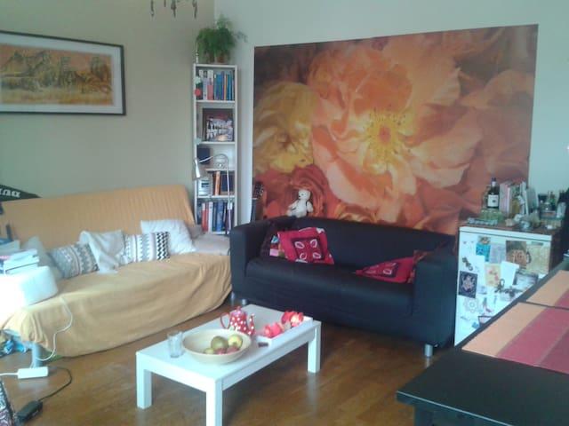 Vierdaagse in het centrum - Nijmegen - Huis