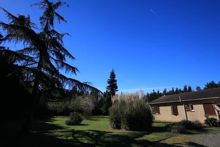 Maison individuelle avec terrain - House