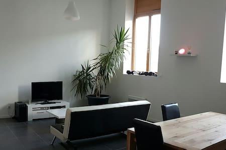 appartement  proximite gare et A47 Saint Etienne - Saint-Chamond - アパート