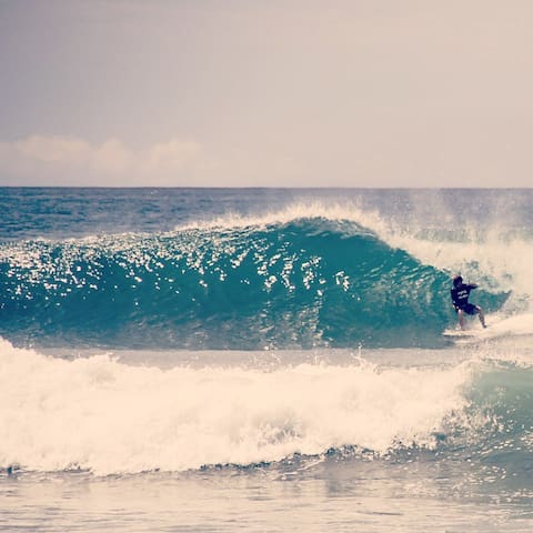 "Costa Dulce surf, nature, beach ""La Ranita Cabin"" - ซานฮวนเดลซูร์ - ที่พักธรรมชาติ"