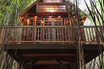 Lindsay Appel's gorgeous photo of our treehouse.  If you want to see more of our farm,grounds, properties, animals, please go to our new website. Alpacatreehouse.   Airbnb doesn't want to put the WWW and the com. But you get it.