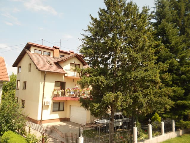 Big cosy apartments with backyard - Ilidža