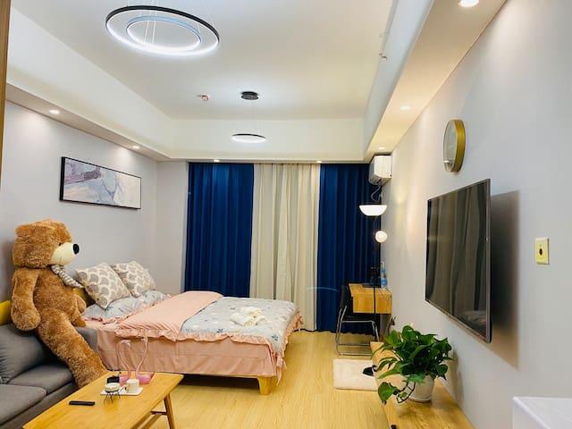 清扬公寓人民医学旁边精装公寓2