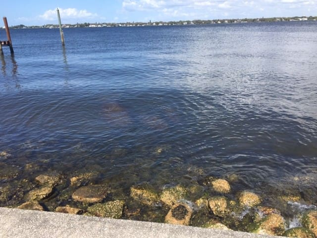 Only a few minutes from the Gulf beaches, the Manatee River is a large, calm river which runs into the Gulf.  This house has no dock, but has a small beach for launching small boats.  It is near numerous public boat ramps if your boat is large.