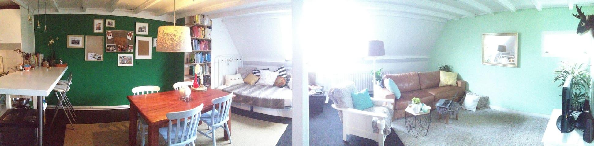 Spacious apartment with bikes - Breda - Appartement