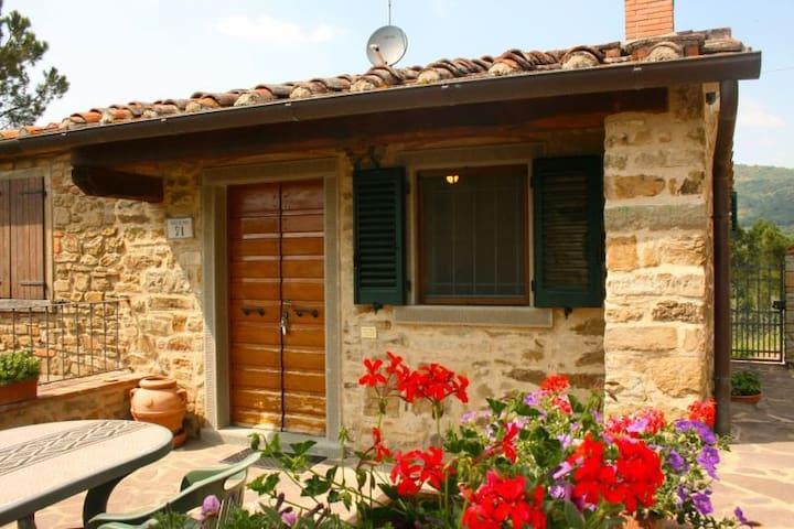 LA MONTANINA - Castiglion Fiorentino - House