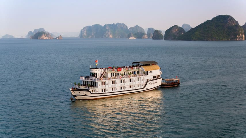 Spetacular Halong tour 2 Days on Paloma Cruise 4* - Hạ Long - Båt
