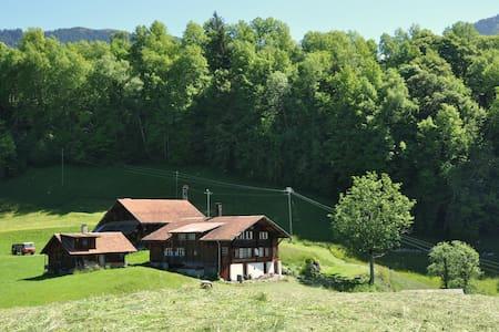 Hasliberg - small house on a farm - House