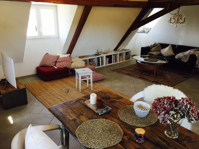 Rooftop flat in a timber framed house - Kembs - Appartement