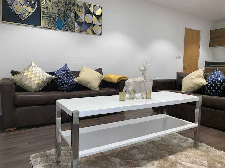 STUNNING 2 BED APARTMENT ROYAL DOCKS, EAST LONDON