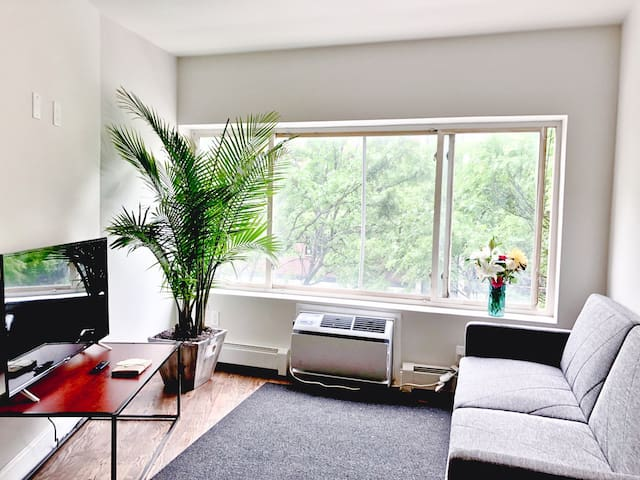 BRAND NEW 3 bd/2 ba APT (10 Min to NYC) - Roof Top