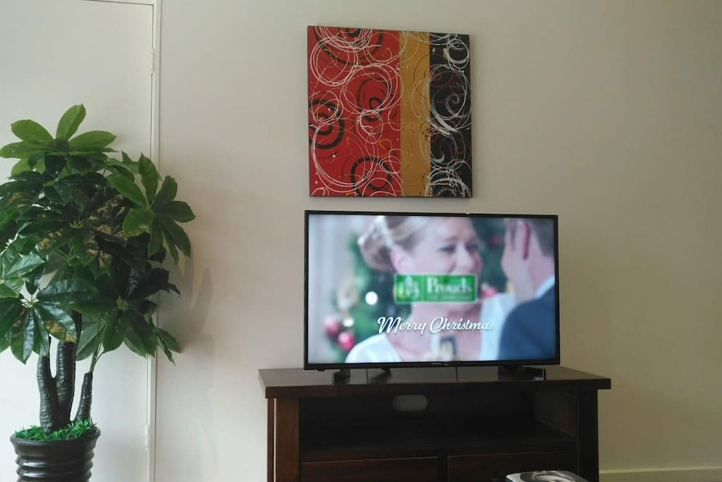 "50"" smart flat TV (wifi connected)"