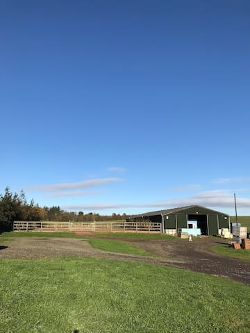 Our stables and riding arena