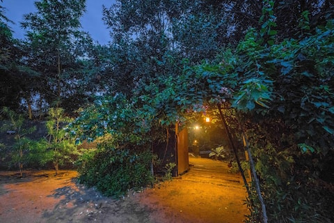 Beyond Stay Mahua Vann Pench Super Deluxe Cottage