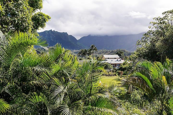 Private Oasis in Hanalei