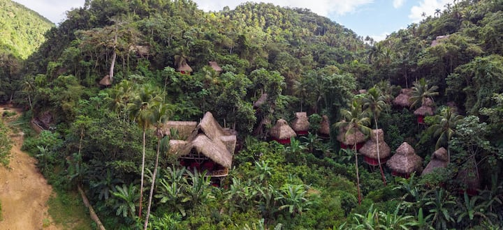 Coffee Tree House - Dominican Tree House Village