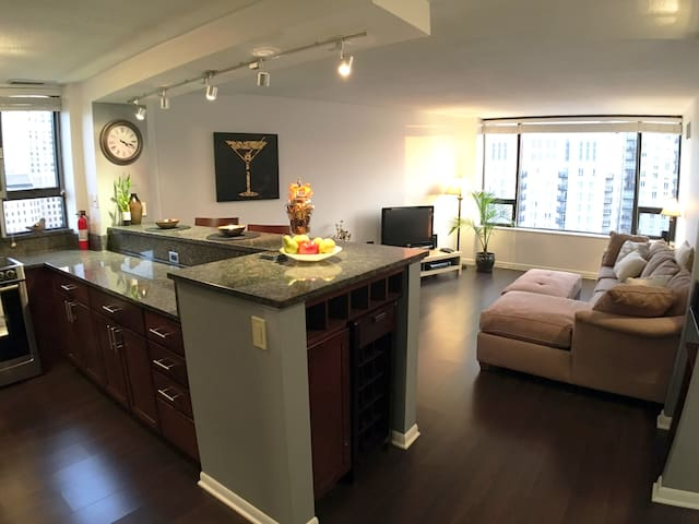 Luxury 1BR, stunning downtown views, parking - Chicago - Wohnung