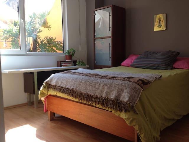Cozy Room 2 blocks away from Chapultepec Park ! - San Miguel Chapultepec I Sección - Apartament