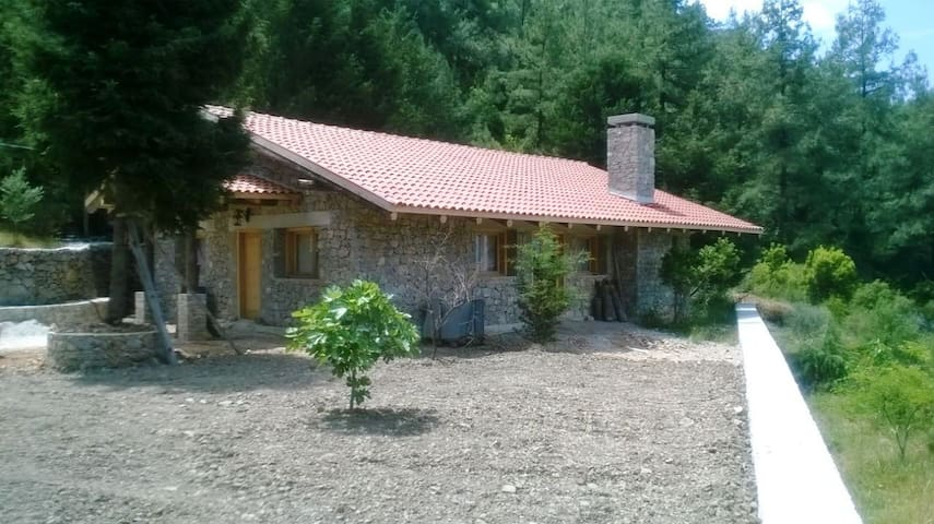 Wolfsspurenhaus - Marmaris - House