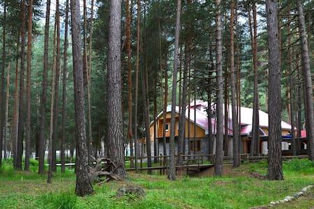 Уютный мини-отель в п. Эльбрус - Elbrus - Guesthouse