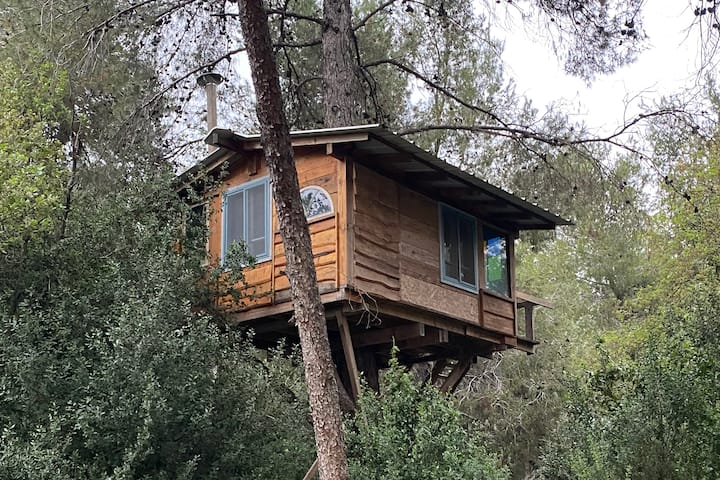 Magical Tree house in the Forest Canopy