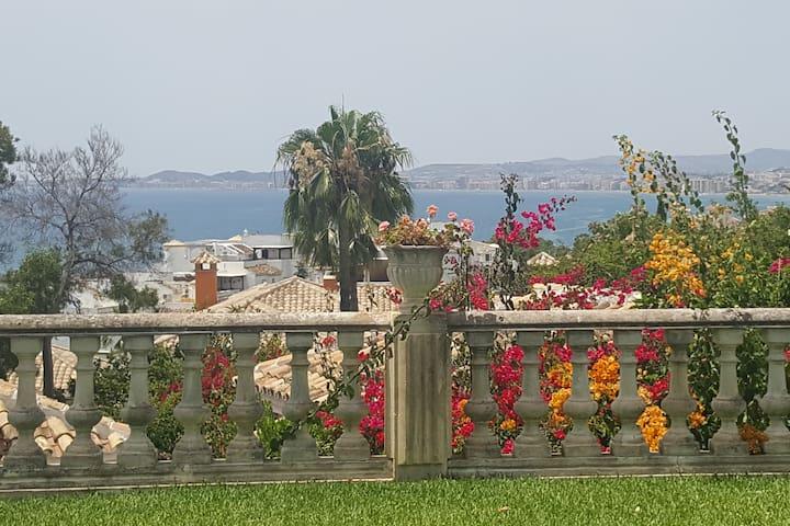 Vistas desde el jardín