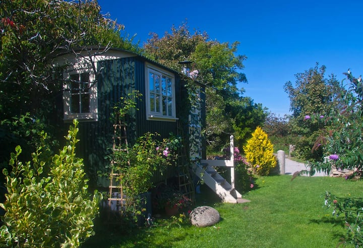 The Rook's Nest Shepherd's Hut in West Cornwall