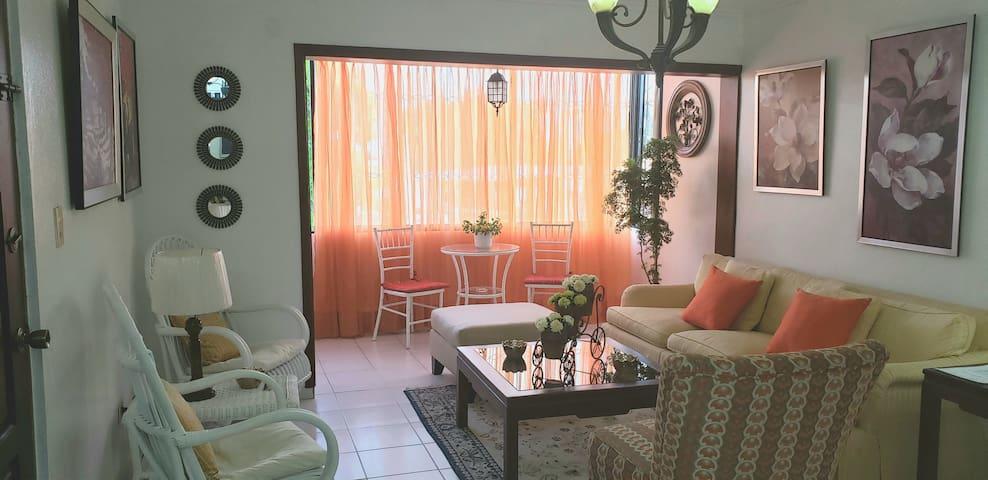 Los Girasoles Entire Apartment - AC/WIFI/TV