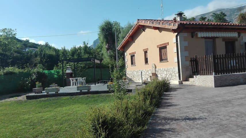 Mikasita rural