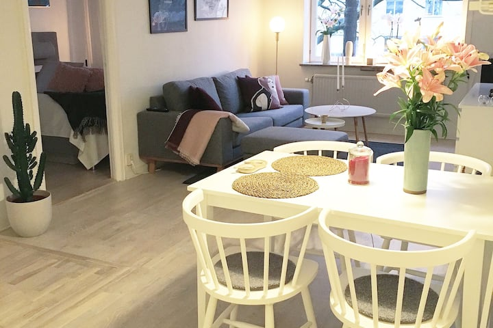 Modern and cozy apartment in central Stockholm