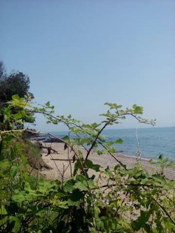 Домик у моря по 250 р. с человека - Abkhazia - Casa