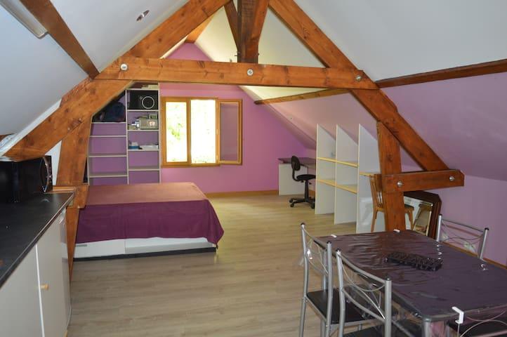 un rideau va être posé entre la chambre et la cuisine .lit 140x190.1 coin bureau+ WIFI superficie(40m²)
