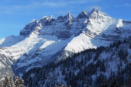 Ski in & out Portes du Soleil apt 3ch tout confort - Val-d'Illiez