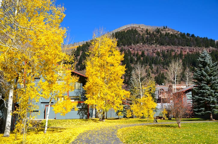 New! Telluride studio condo, Great location. - Telluride - Departamento