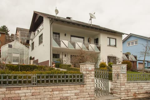 Appartment- im Weinort Wirmsthal