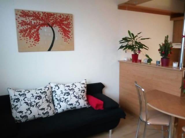 Pronájem dvoupokojového bytu kousek od centra - Hradec Králové