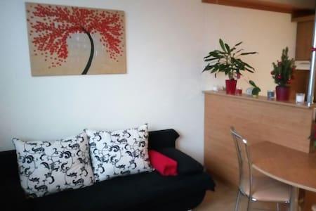 Pronájem dvoupokojového bytu kousek od centra - Hradec Králové - Apartamento