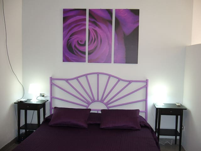 Violet bed in the night area