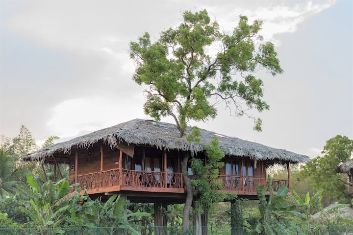 Panoramic Family Treehouse at The Hideout Sigiriya
