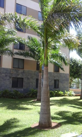 San Jose Friends,Alajuela - San José - Apartment