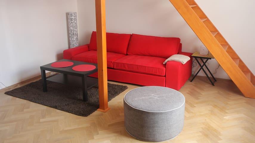 Apartment in Žižkov