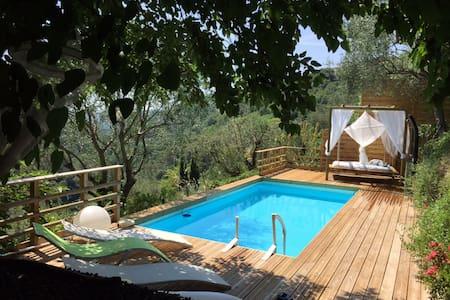 Maison calme ensoleillée piscine et jacuzzi - Nice