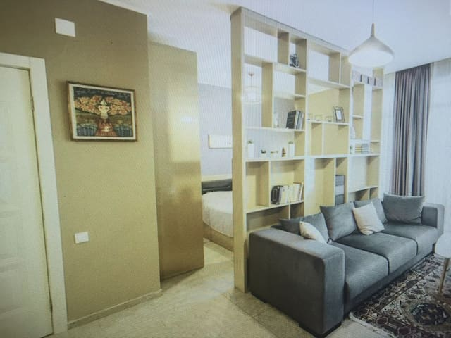 Delicate and comfortable Apartment