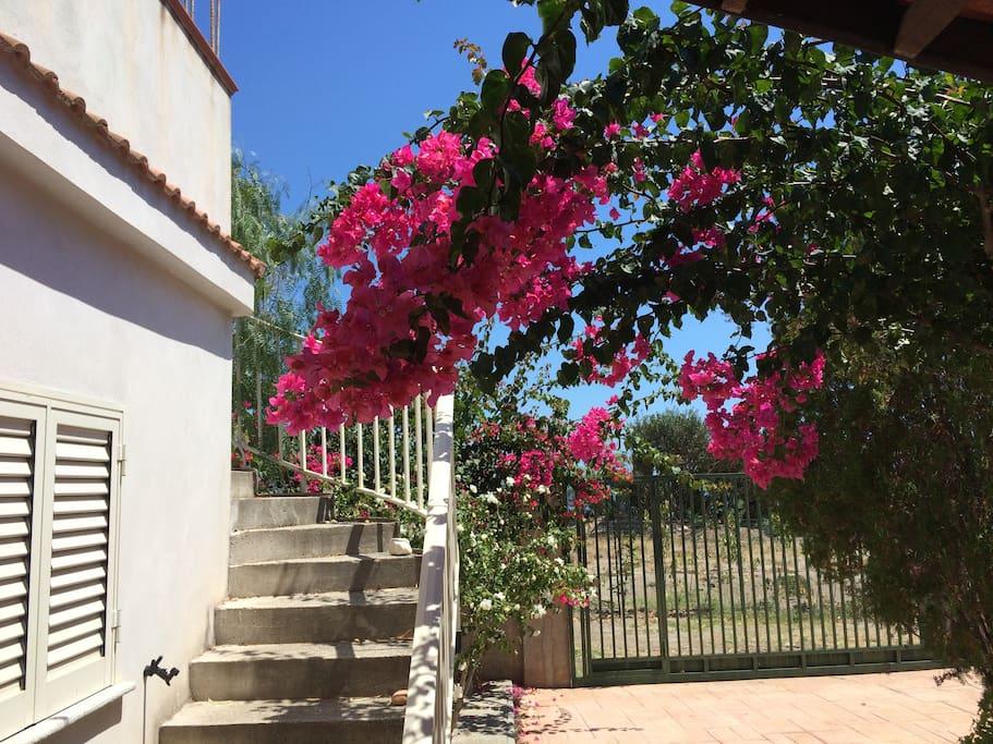 cancello di ingresso alla casa