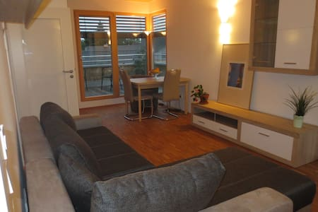 Bright apartment with rooftop terrace at the park - Erding - Huoneisto