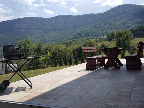 Sarajevo quiet holiday green area villa