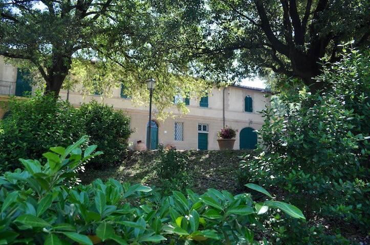 Farm in Tuscan country - Cortona - Pis