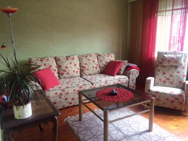 Cozy apartment in the center of Haapsalu